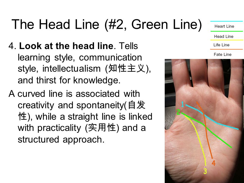 The Head Line (#2, Green Line) 4. Look at the head line.
