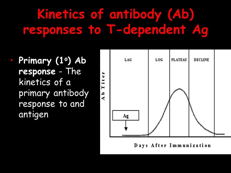 Kinetics of antibody (Ab) responses to T-dependent Ag Primary (1 o ) Ab response - The kinetics of a primary antibody response to and antigen