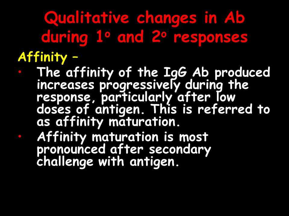 Qualitative changes in Ab during 1 o and 2 o responses Affinity – The affinity of the IgG Ab produced increases progressively during the response, particularly after low doses of antigen.