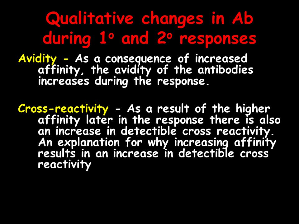 Qualitative changes in Ab during 1 o and 2 o responses Avidity - As a consequence of increased affinity, the avidity of the antibodies increases during the response.