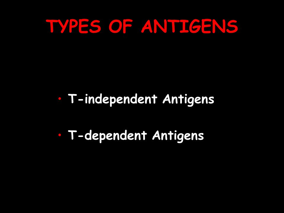 TYPES OF ANTIGENS T-independent Antigens T-dependent Antigens