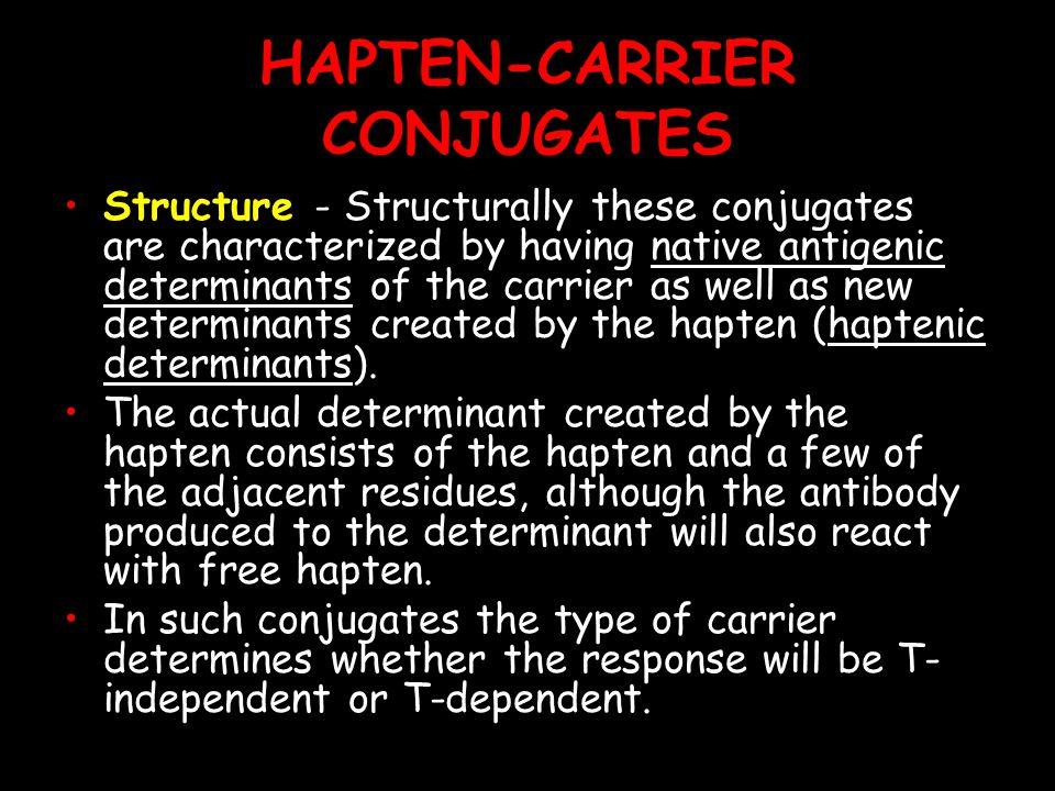 HAPTEN-CARRIER CONJUGATES Structure - Structurally these conjugates are characterized by having native antigenic determinants of the carrier as well as new determinants created by the hapten (haptenic determinants).