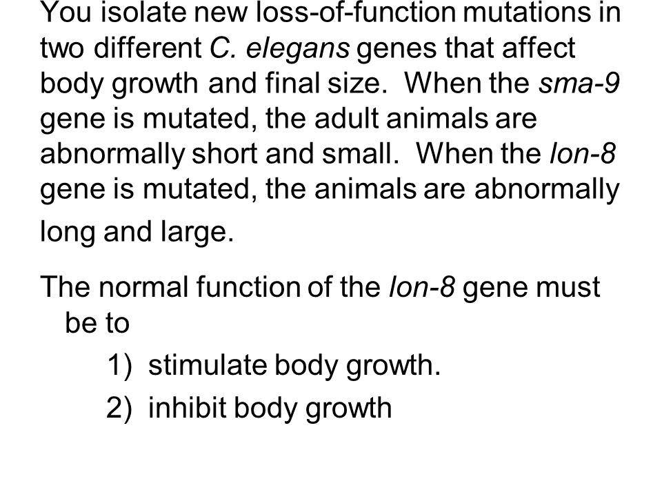 You isolate new loss-of-function mutations in two different C. elegans genes that affect body growth and final size. When the sma-9 gene is mutated, t