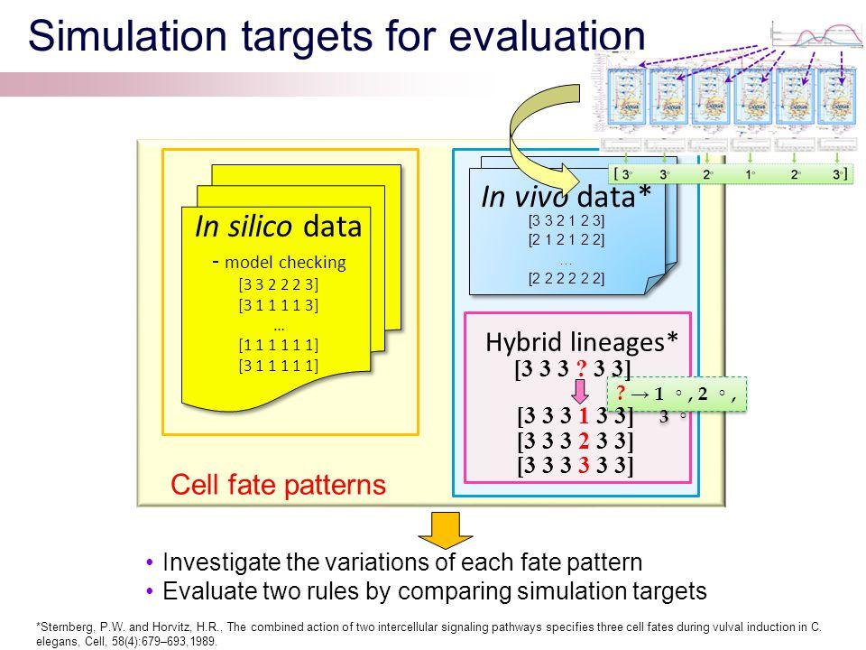 Simulation targets for evaluation In silico data - model checking [3 3 2 2 2 3] [3 1 1 1 1 3] … [1 1 1 1 1 1] [3 1 1 1 1 1] In vivo data In vivo data* [3 3 2 1 2 3] [2 1 2 1 2 2] … [2 2 2 2 2 2] .