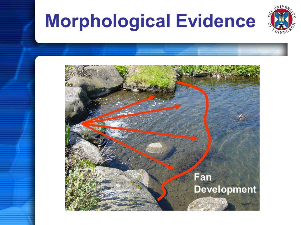 Morphological Evidence Fan Development