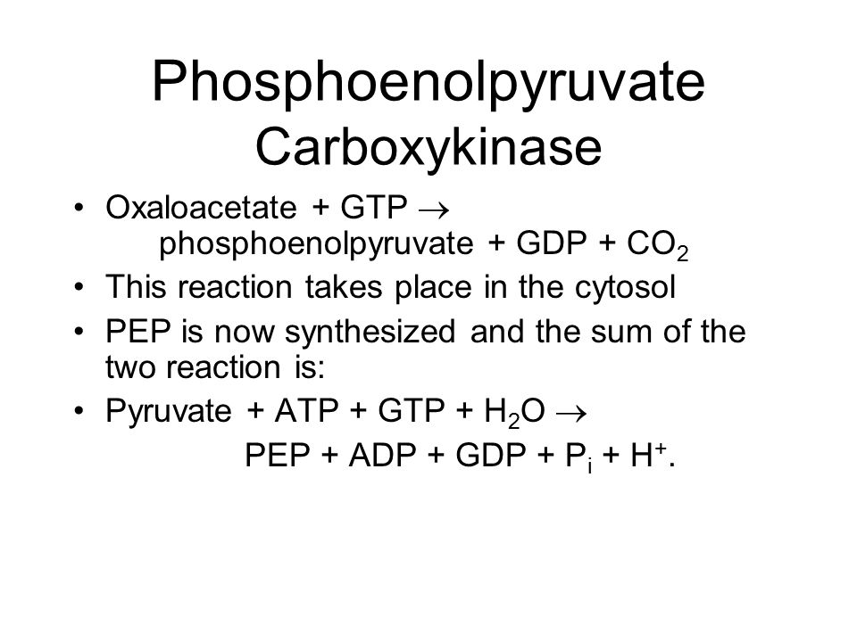 Phosphoenolpyruvate Carboxykinase Oxaloacetate + GTP  phosphoenolpyruvate + GDP + CO 2 This reaction takes place in the cytosol PEP is now synthesized and the sum of the two reaction is: Pyruvate + ATP + GTP + H 2 O  PEP + ADP + GDP + P i + H +.