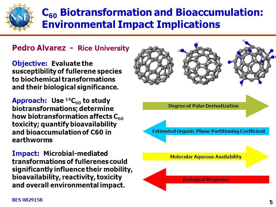 Degree of Polar Derivatization Estimated Organic Phase Partitioning Coefficient Molecular Aqueous Availability Biological Response C 60 Biotransformat