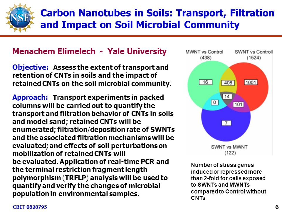 Carbon Nanotubes in Soils: Transport, Filtration and Impact on Soil Microbial Community Number of stress genes induced or repressed more than 2-fold for cells exposed to SWNTs and MWNTs compared to Control without CNTs Objective: Assess the extent of transport and retention of CNTs in soils and the impact of retained CNTs on the soil microbial community.