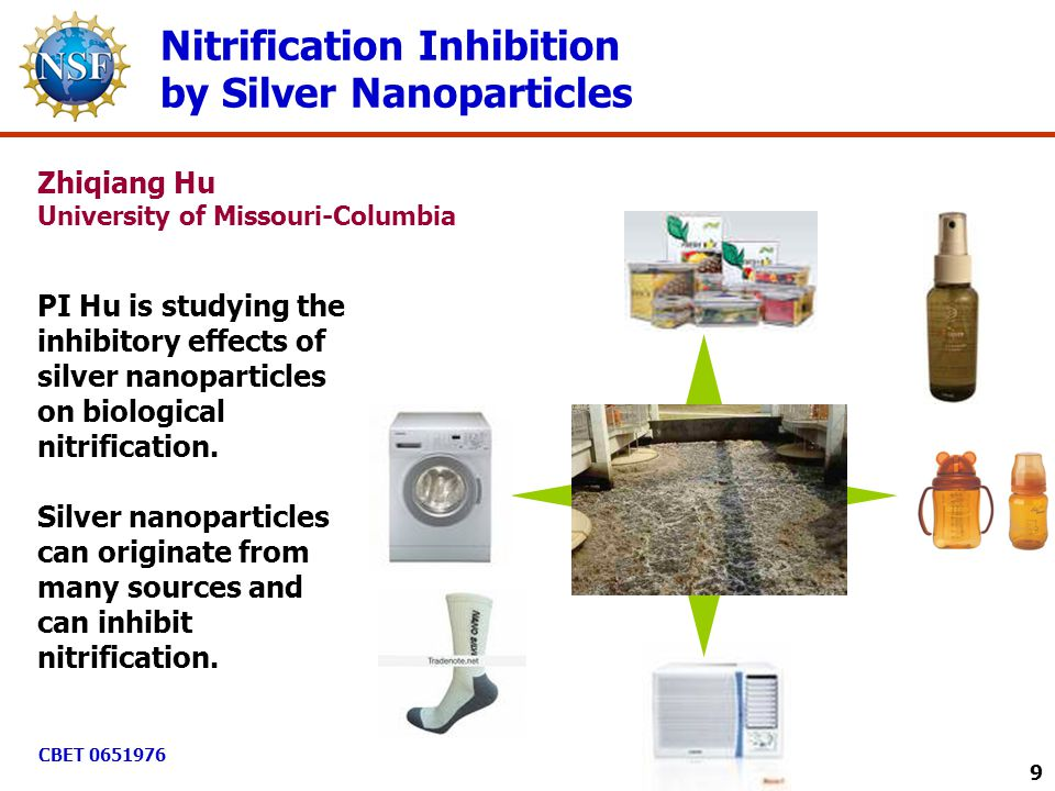 Nitrification Inhibition by Silver Nanoparticles PI Hu is studying the inhibitory effects of silver nanoparticles on biological nitrification. Silver