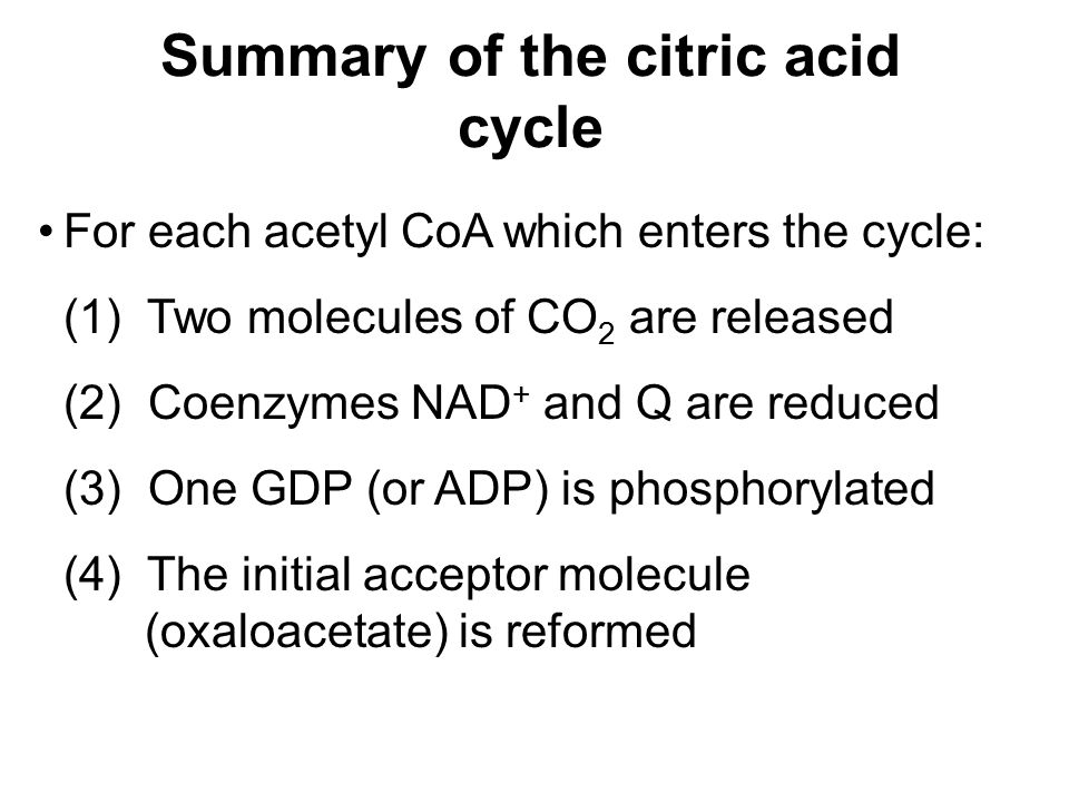 Summary of the citric acid cycle For each acetyl CoA which enters the cycle: (1) Two molecules of CO 2 are released (2) Coenzymes NAD + and Q are reduced (3) One GDP (or ADP) is phosphorylated (4) The initial acceptor molecule (oxaloacetate) is reformed
