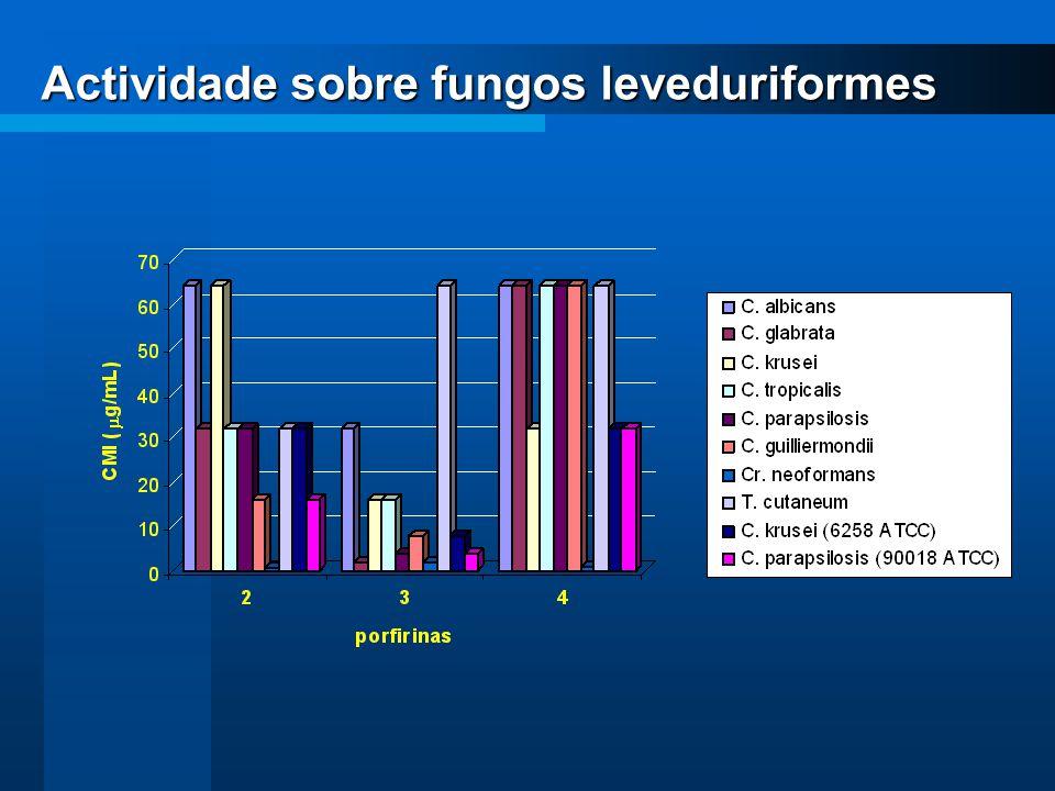 Actividade sobre fungos leveduriformes