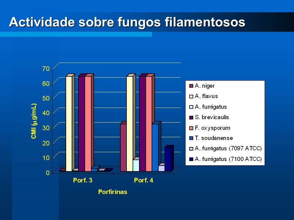 Actividade sobre fungos filamentosos