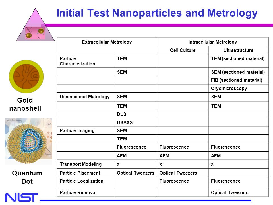 MSEL MEL CSTL Initial Test Nanoparticles and Metrology Gold nanoshell Extracellular MetrologyIntracellular Metrology Cell CultureUltrastructure Partic