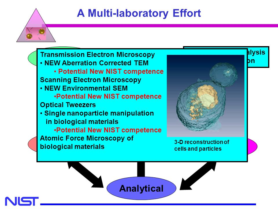 MSEL MEL CSTL A Multi-laboratory Effort Modeling Cell Culture Specimen Preparation Microscopy Analytical Nanometrology Single Particle Analysis and Ma