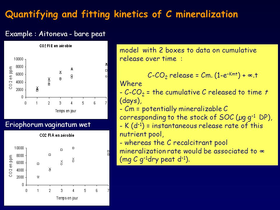 Quantifying and fitting kinetics of C mineralization Example : Aitoneva - bare peat Eriophorum vaginatum wet model with 2 boxes to data on cumulative release over time : C-CO 2 release = Cm.