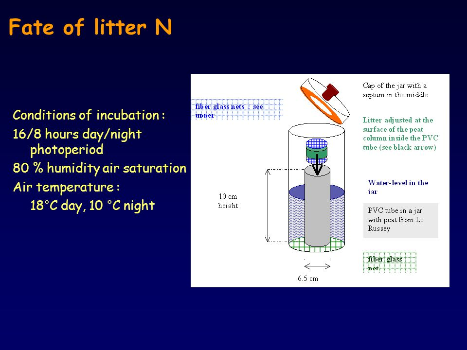 C-CO 2 kinetics The priming effect GC Analysis of C (CO 2 - CH 4 ) release in closed jars Analysis of total C and N in water (losses from the peat column ??)