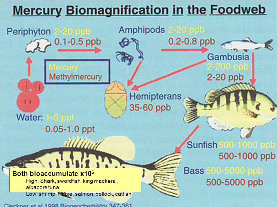 Fate Both bioaccumulate x10 6 High: Shark, swordfish, king mackeral, albacore tuna Low: shrimp, tilapia, salmon, pollock, catfish