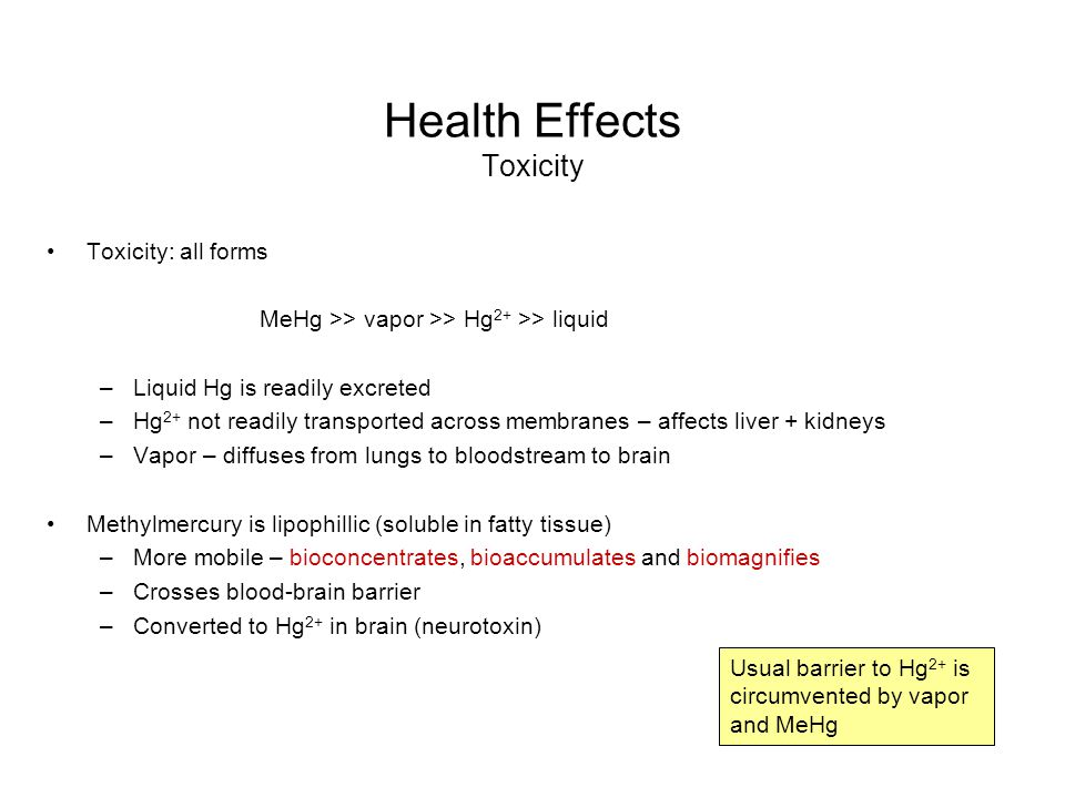 Health Effects Toxicity Toxicity: all forms MeHg >> vapor >> Hg 2+ >> liquid –Liquid Hg is readily excreted –Hg 2+ not readily transported across memb