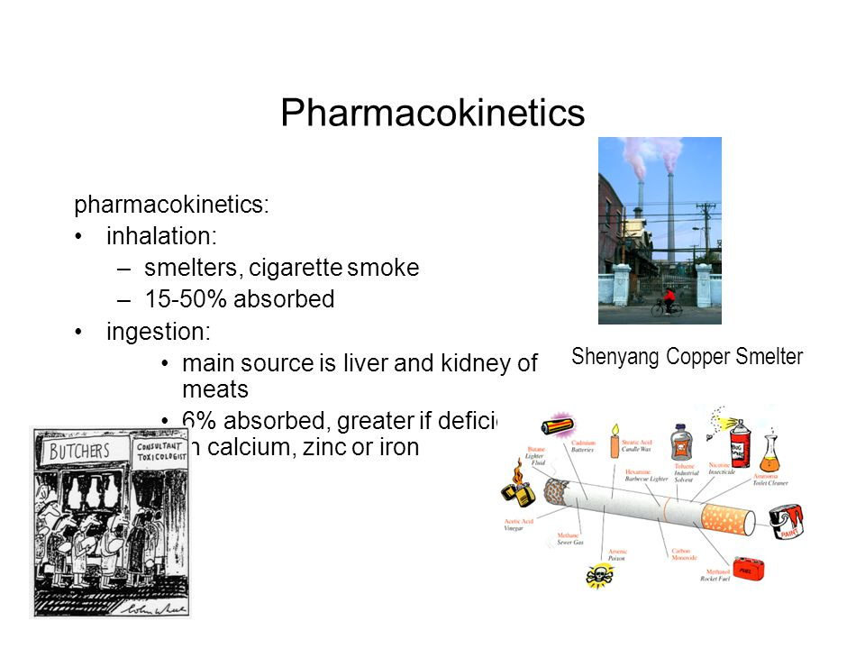Pharmacokinetics pharmacokinetics: inhalation: –smelters, cigarette smoke –15-50% absorbed ingestion: main source is liver and kidney of meats 6% abso