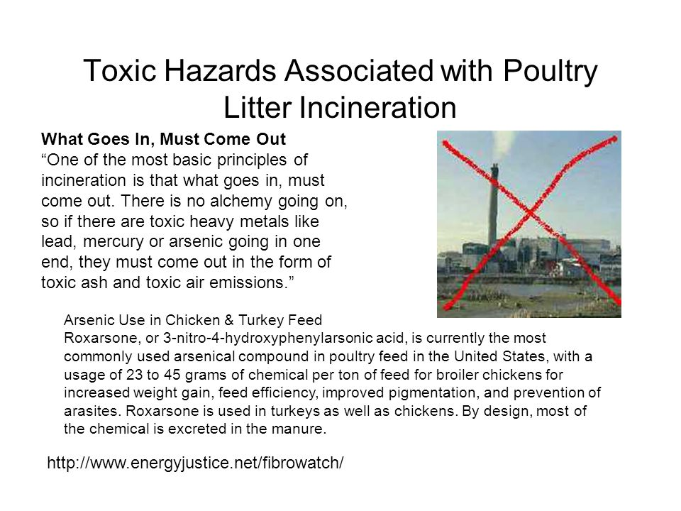 "Toxic Hazards Associated with Poultry Litter Incineration What Goes In, Must Come Out ""One of the most basic principles of incineration is that what g"