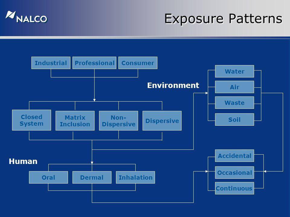 Exposure Patterns Closed System Accidental Soil Waste Air Continuous Matrix Inclusion Occasional ConsumerProfessionalIndustrial Non- Dispersive Dispersive Water OralInhalationDermal Human Environment