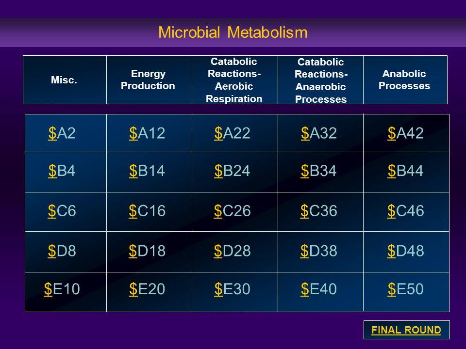 Microbial Metabolism $$A2 $$B4 $$C6 $$D8 $$E10 $$A12$$A32$$A22$$A42 $$B14$B24$$B34$$B44 $$C16$$C26$$C36$$C46 $$D18$$D28$$D38$$D48 $$E20$$E30$$E40$E50 Misc.