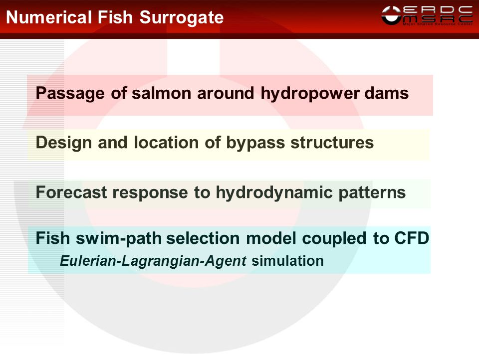 Numerical Fish Surrogate Passage of salmon around hydropower dams Design and location of bypass structures Forecast response to hydrodynamic patterns Fish swim-path selection model coupled to CFD Eulerian-Lagrangian-Agent simulation