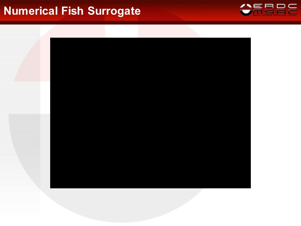 Numerical Fish Surrogate