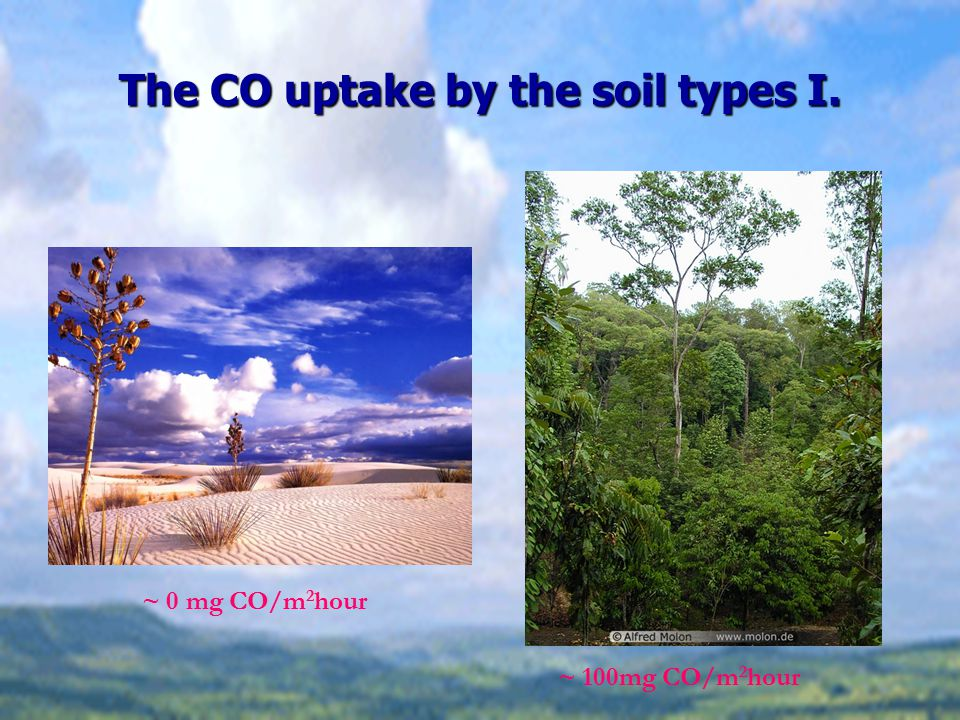 The CO uptake by the soil types I. ~ 0 mg CO/m 2 hour ~ 100mg CO/m 2 hour
