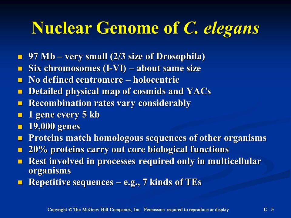 Copyright © The McGraw-Hill Companies, Inc. Permission required to reproduce or display C - 5 Nuclear Genome of C. elegans 97 Mb – very small (2/3 siz