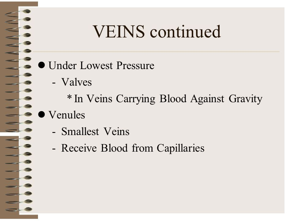 VEINS continued Under Lowest Pressure -Valves *In Veins Carrying Blood Against Gravity Venules -Smallest Veins -Receive Blood from Capillaries