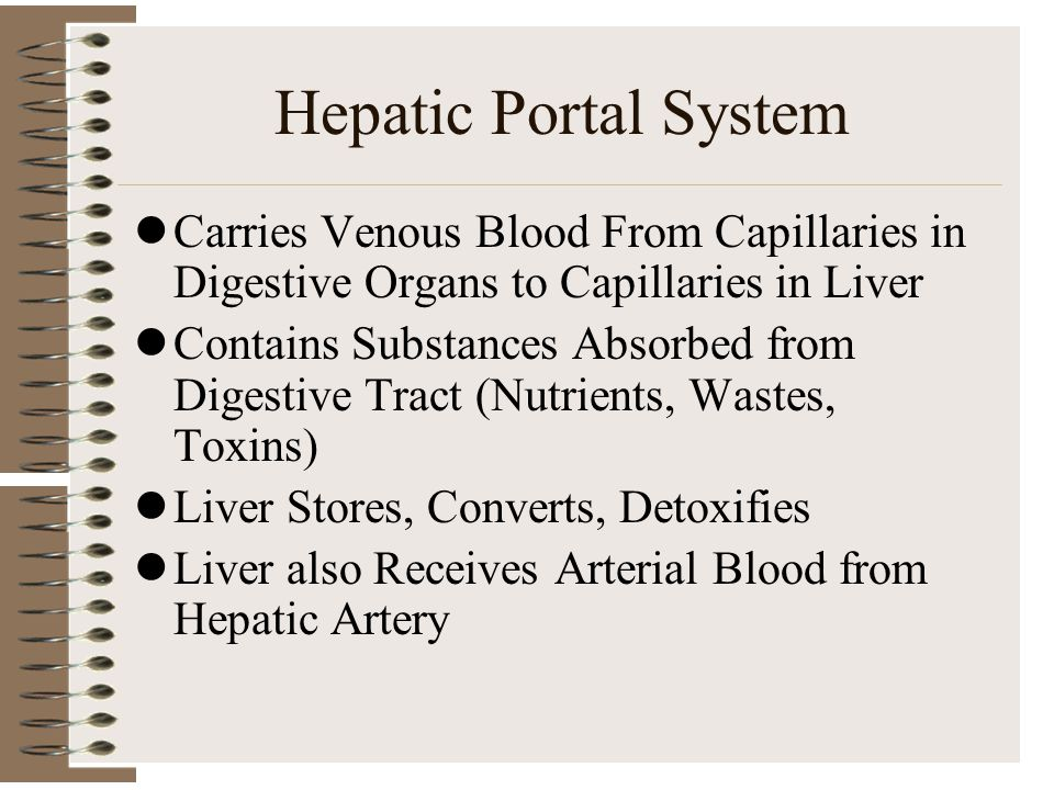Hepatic Portal System Carries Venous Blood From Capillaries in Digestive Organs to Capillaries in Liver Contains Substances Absorbed from Digestive Tr