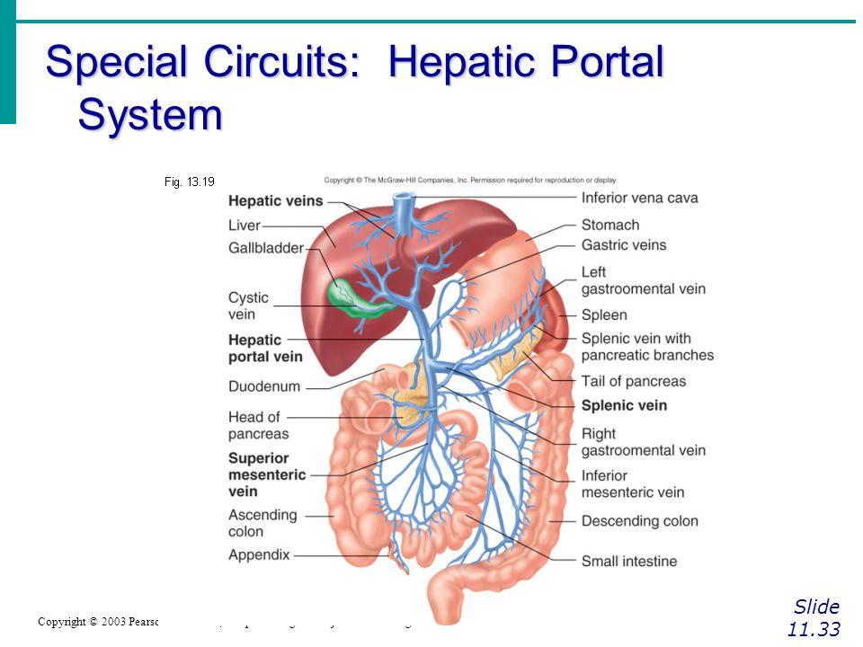 Special Circuits: Hepatic Portal System Slide 11.33 Copyright © 2003 Pearson Education, Inc. publishing as Benjamin Cummings Figure 11.14