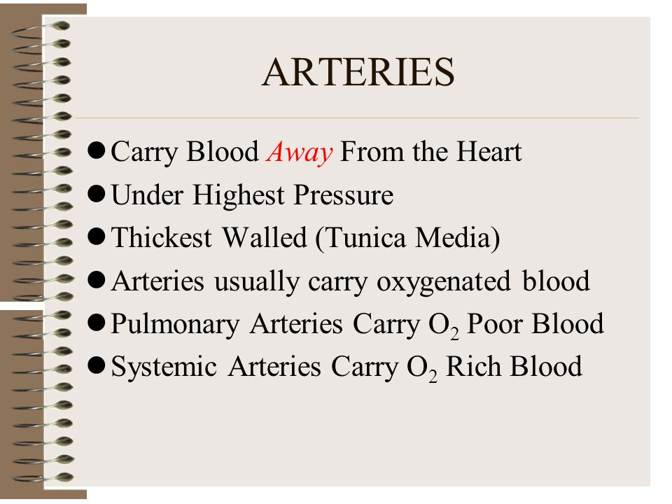 ARTERIES Carry Blood Away From the Heart Under Highest Pressure Thickest Walled (Tunica Media) Arteries usually carry oxygenated blood Pulmonary Arter