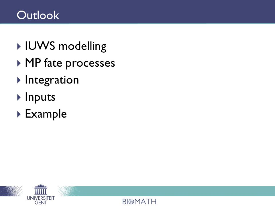Outlook  IUWS modelling  MP fate processes  Integration  Inputs  Example