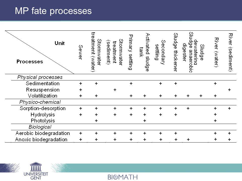 MP fate processes