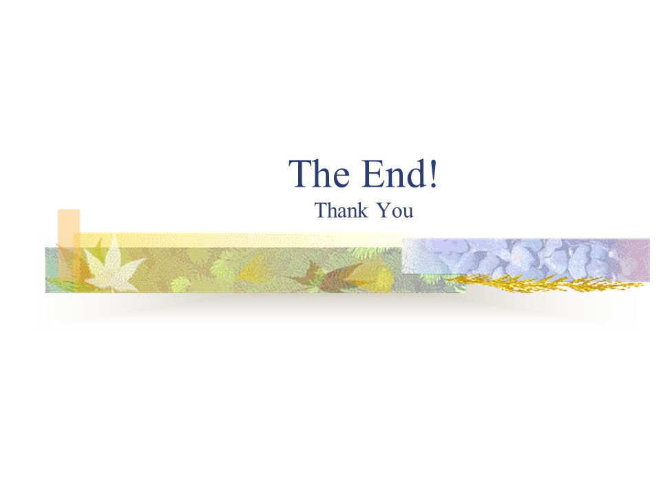 The End! Thank You