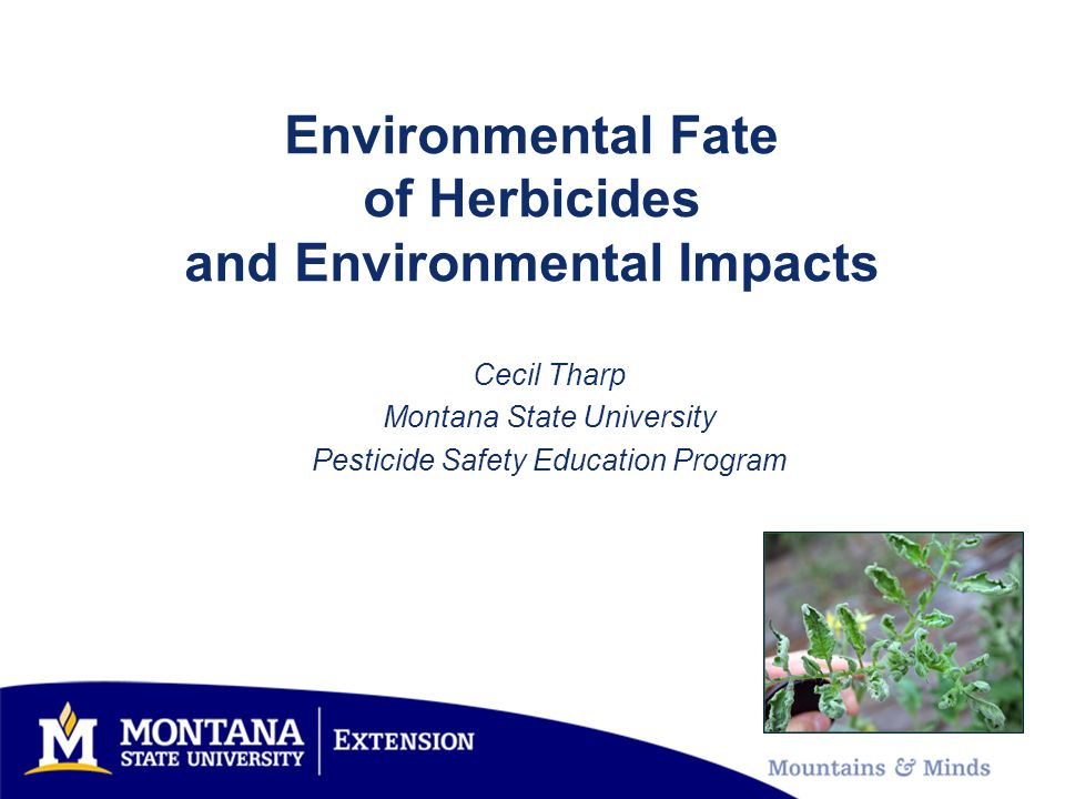 Environmental Fate of Herbicides and Environmental Impacts Cecil Tharp Montana State University Pesticide Safety Education Program