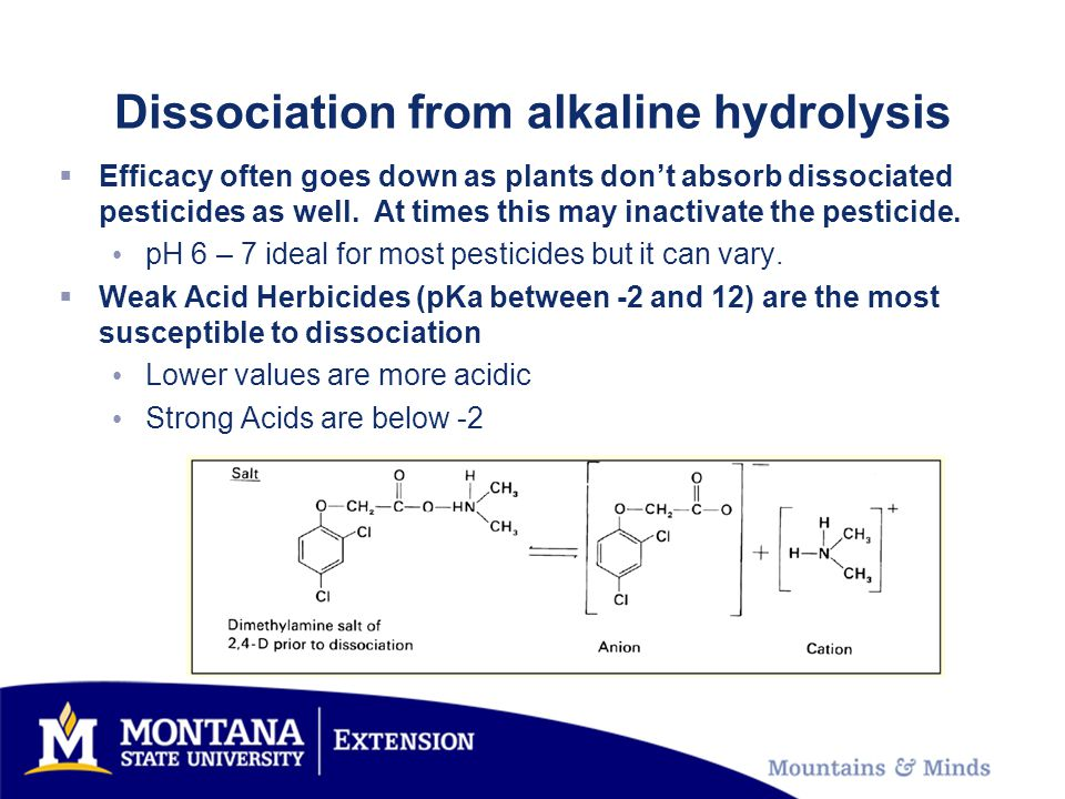 Dissociation from alkaline hydrolysis  Efficacy often goes down as plants don't absorb dissociated pesticides as well. At times this may inactivate t