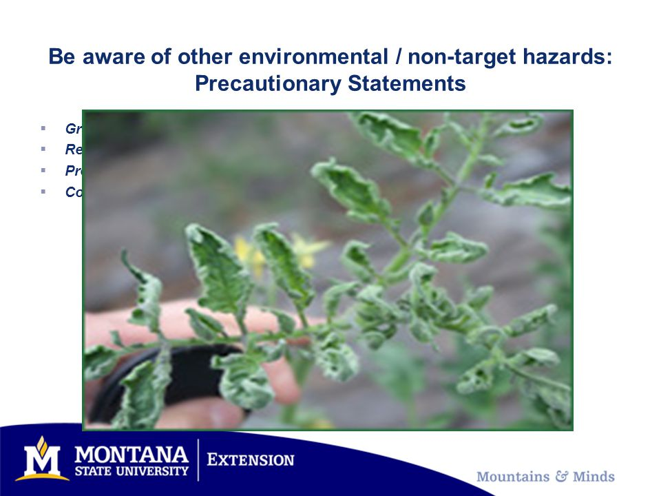 Be aware of other environmental / non-target hazards: Precautionary Statements  Grazing Intervals  Re-crop restrictions  Pre-harvest intervals  Composting restrictions
