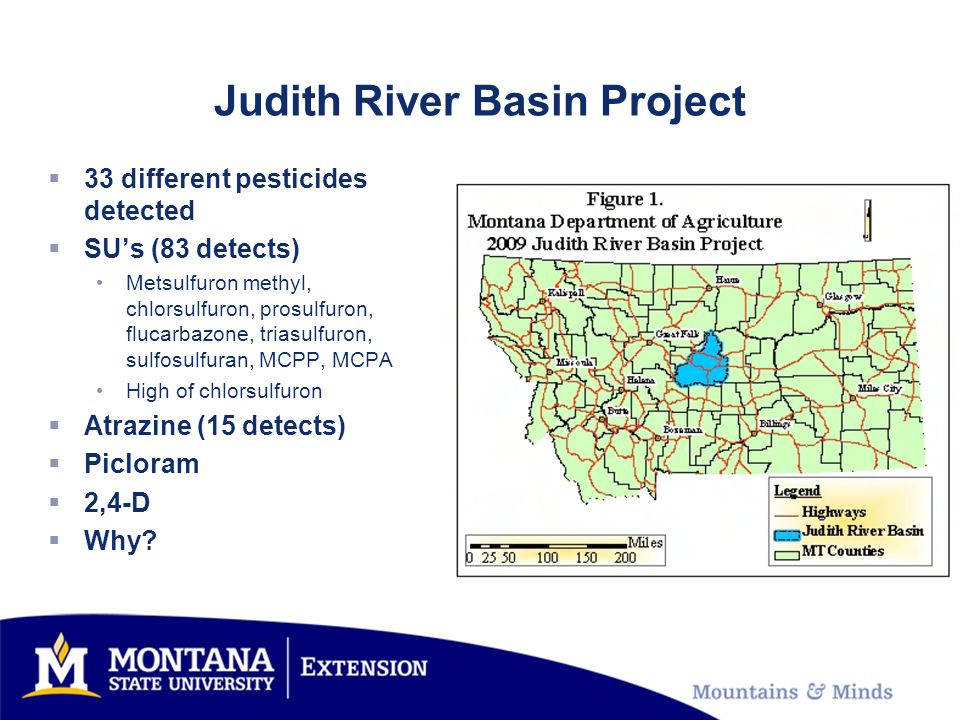 Judith River Basin Project  33 different pesticides detected  SU's (83 detects) Metsulfuron methyl, chlorsulfuron, prosulfuron, flucarbazone, triasu