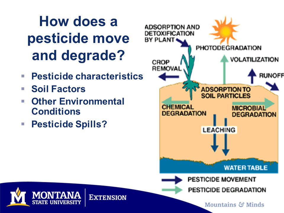 27% of Montana applicators surveyed indicated they did not clean up all pesticide spills during their spray career.