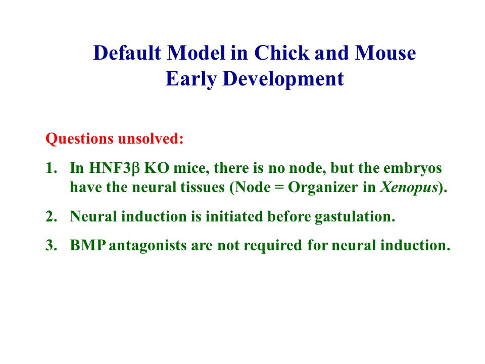 Default Model in Chick and Mouse Early Development Questions unsolved: 1.In HNF3  KO mice, there is no node, but the embryos have the neural tissues (Node = Organizer in Xenopus).