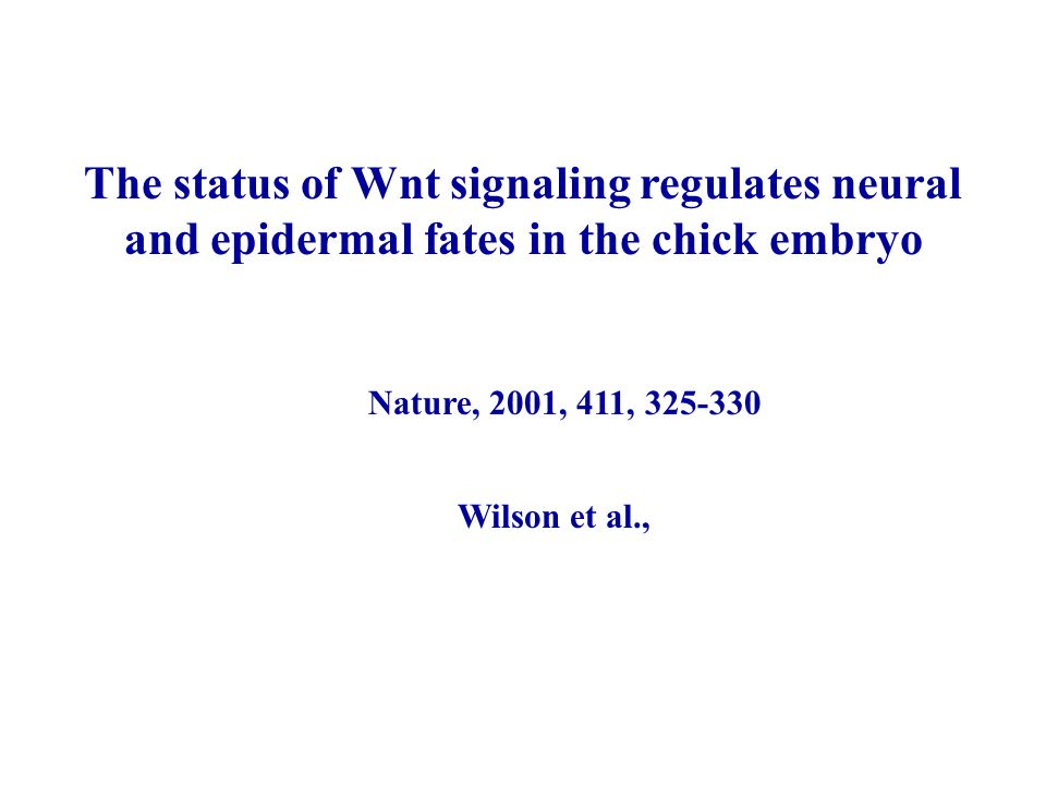 The status of Wnt signaling regulates neural and epidermal fates in the chick embryo Wilson et al., Nature, 2001, 411, 325-330