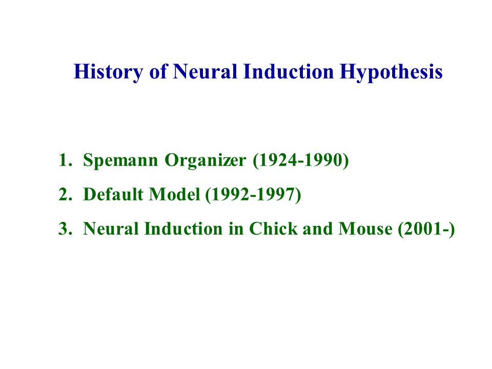 History of Neural Induction Hypothesis 1.Spemann Organizer (1924-1990) 2.Default Model (1992-1997) 3.Neural Induction in Chick and Mouse (2001-)