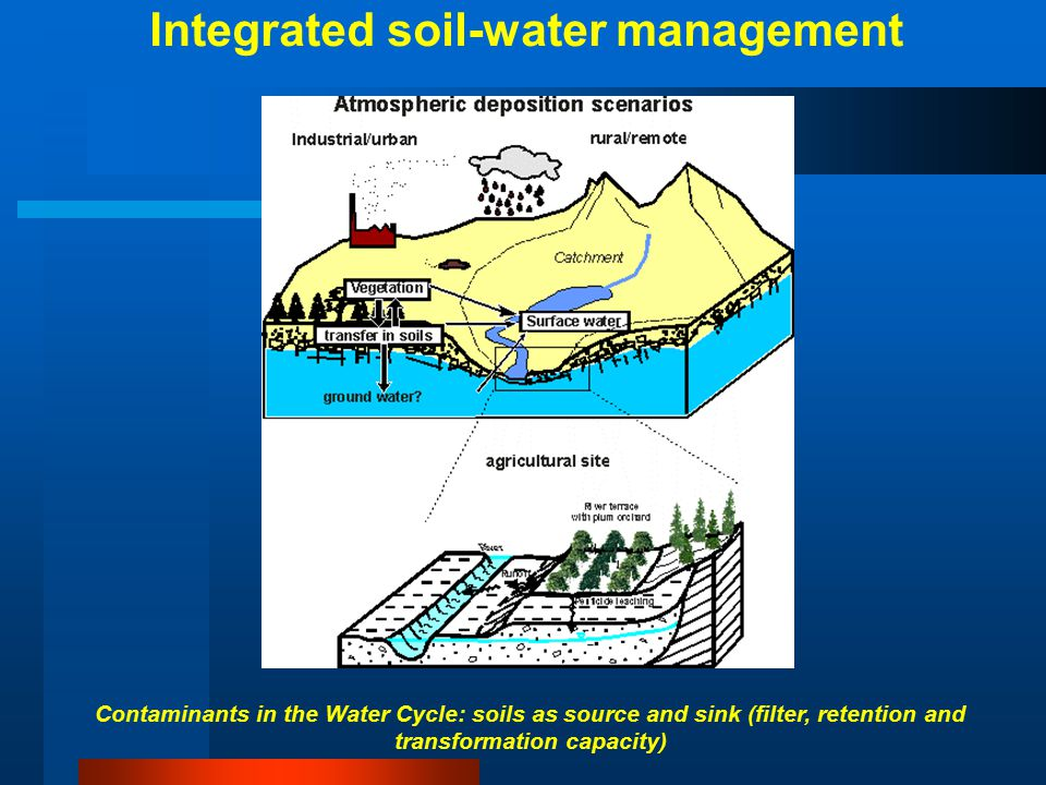 Wastewater treatment plant Drinking water production Man Sediment Sewage sludge Ground water Soil Surface water Estuarine water Sediment Ocean water Sediment Biota Surfactant usage (10 M.tons)