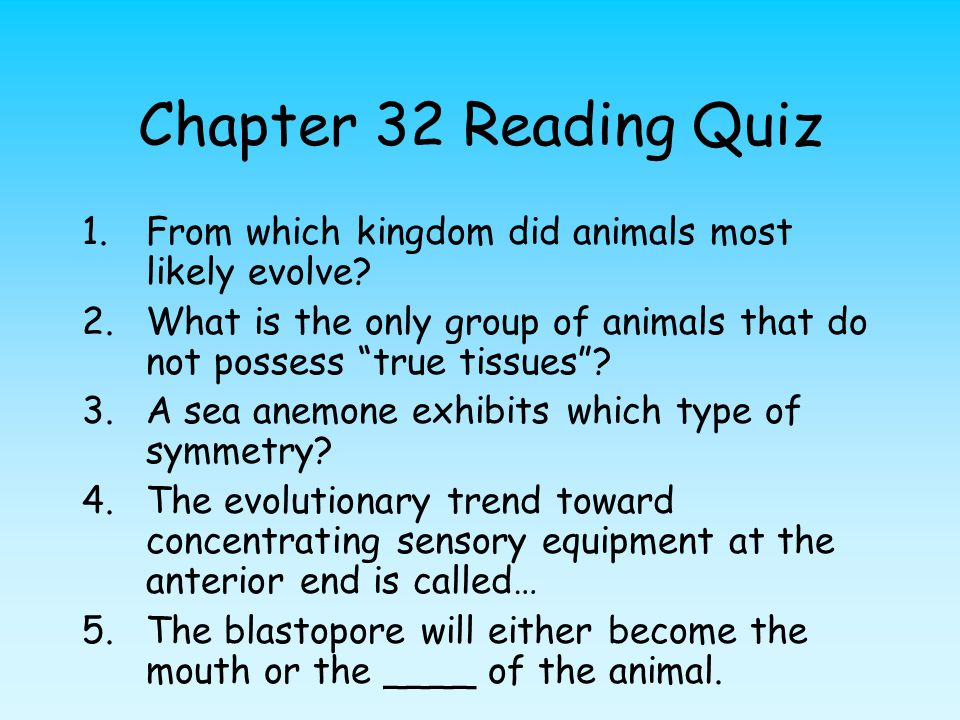 """Chapter 32 Reading Quiz 1.From which kingdom did animals most likely evolve? 2.What is the only group of animals that do not possess """"true tissues""""? 3"""