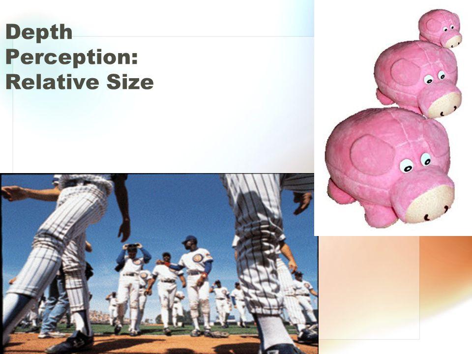 Depth Perception: Relative Size