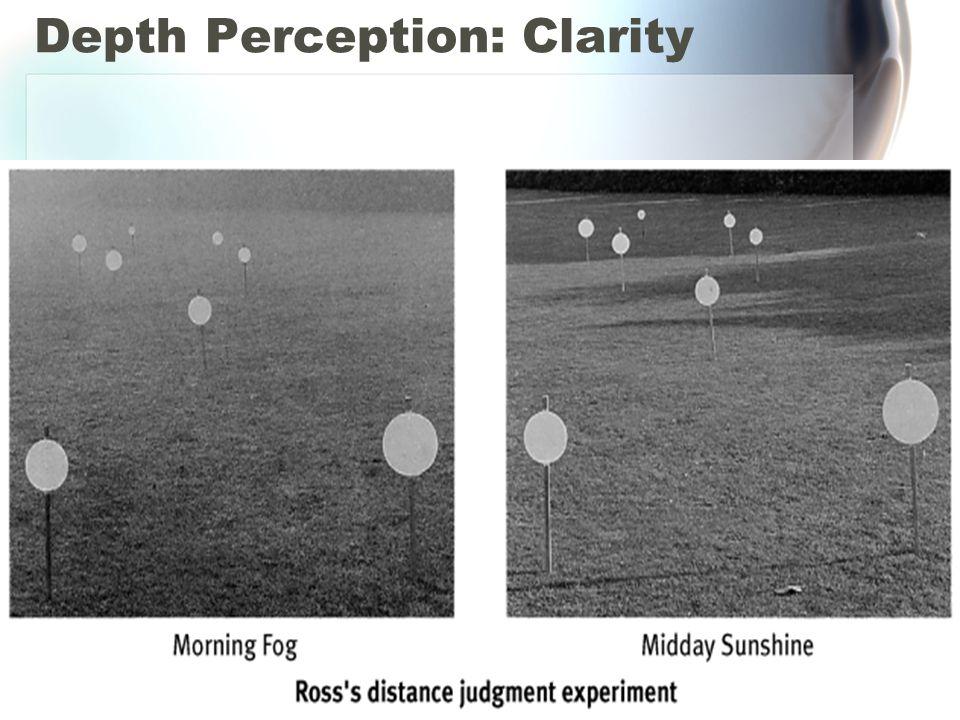 Depth Perception: Clarity