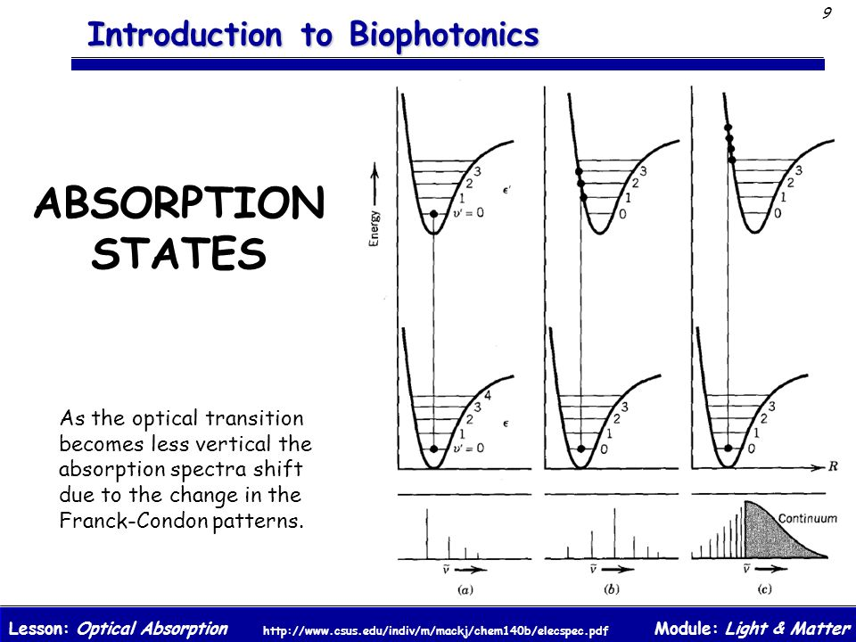 Module: Light & MatterLesson: Optical Absorption 9 Introduction to Biophotonics ABSORPTION STATES http://www.csus.edu/indiv/m/mackj/chem140b/elecspec.pdf As the optical transition becomes less vertical the absorption spectra shift due to the change in the Franck-Condon patterns.